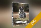 Hundefotografie für Anfänger und Fortgeschrittene (DVD)